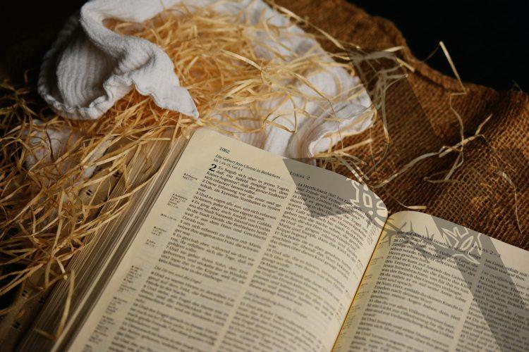 bible-book-business-236306
